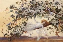 Uncataloged Fairy Art