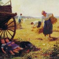 haymaking.jpg
