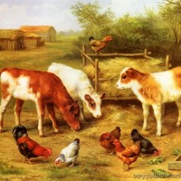huntedgarcalvesandchickensfeedinginafarmyard.jpg