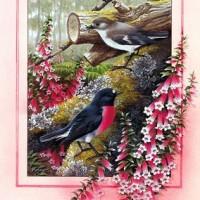 paustralianbirdscal200309.jpg